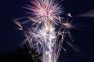 English: Fireworks on the Fourth of July