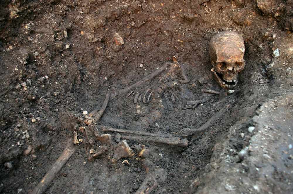 Skeleton found beneath Leicester, UK parking lot confirmed by DNA to be that of Richard III.