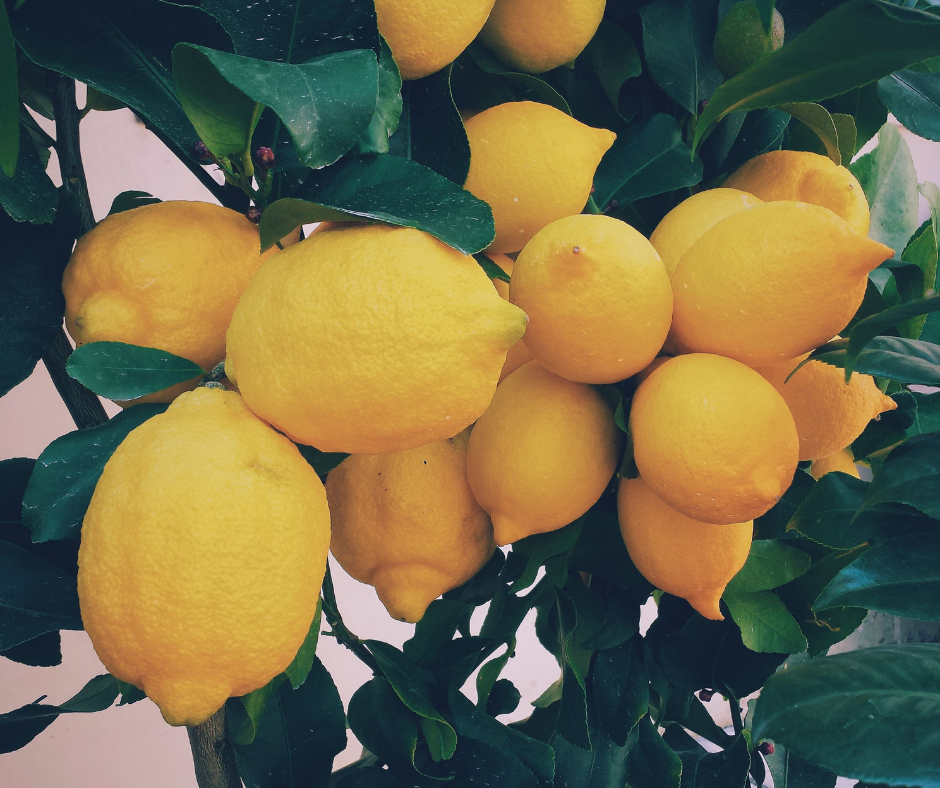 lemons for post