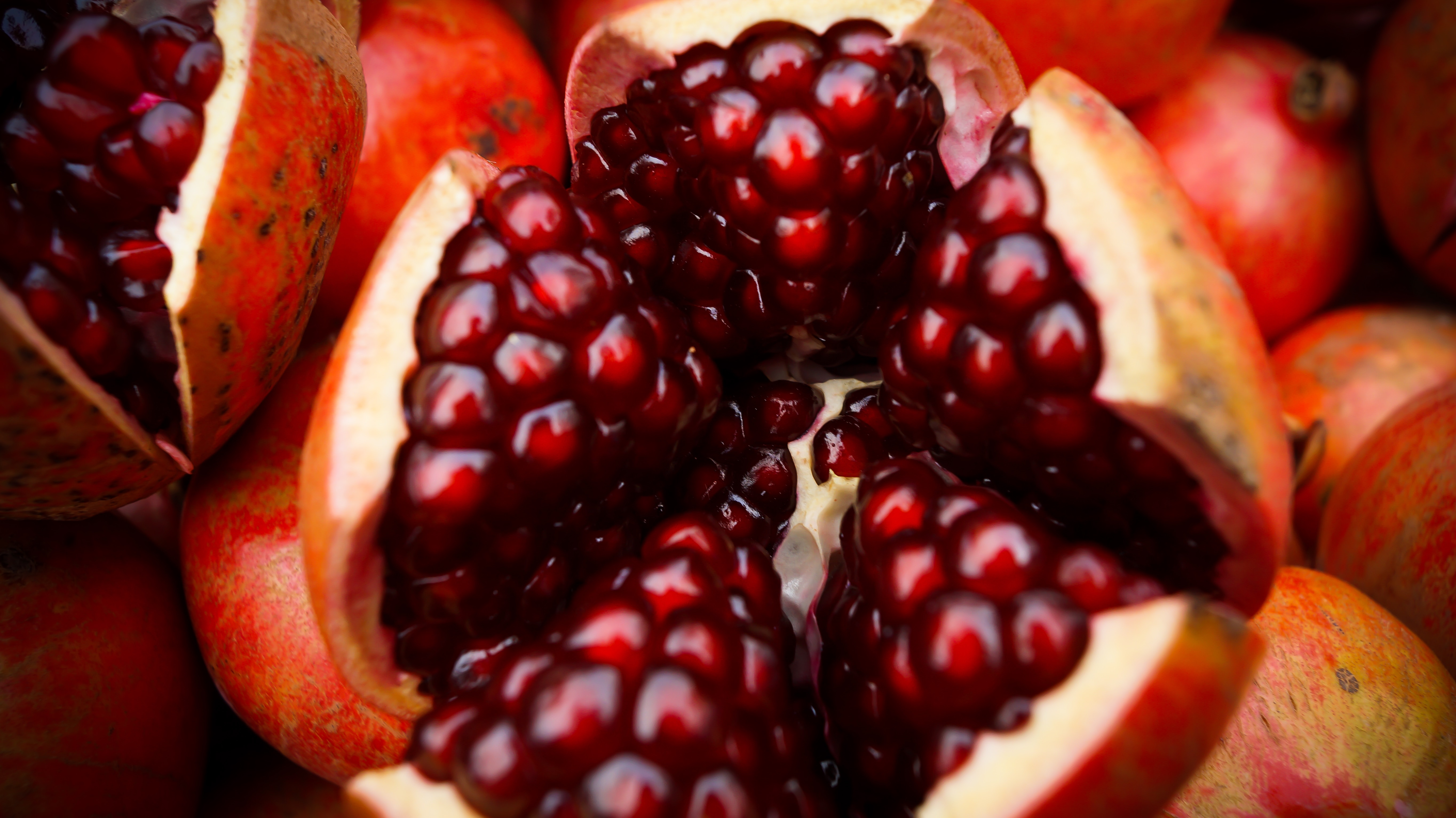 Turkey with Pomegranate Sauce: A Renaissance Recipe