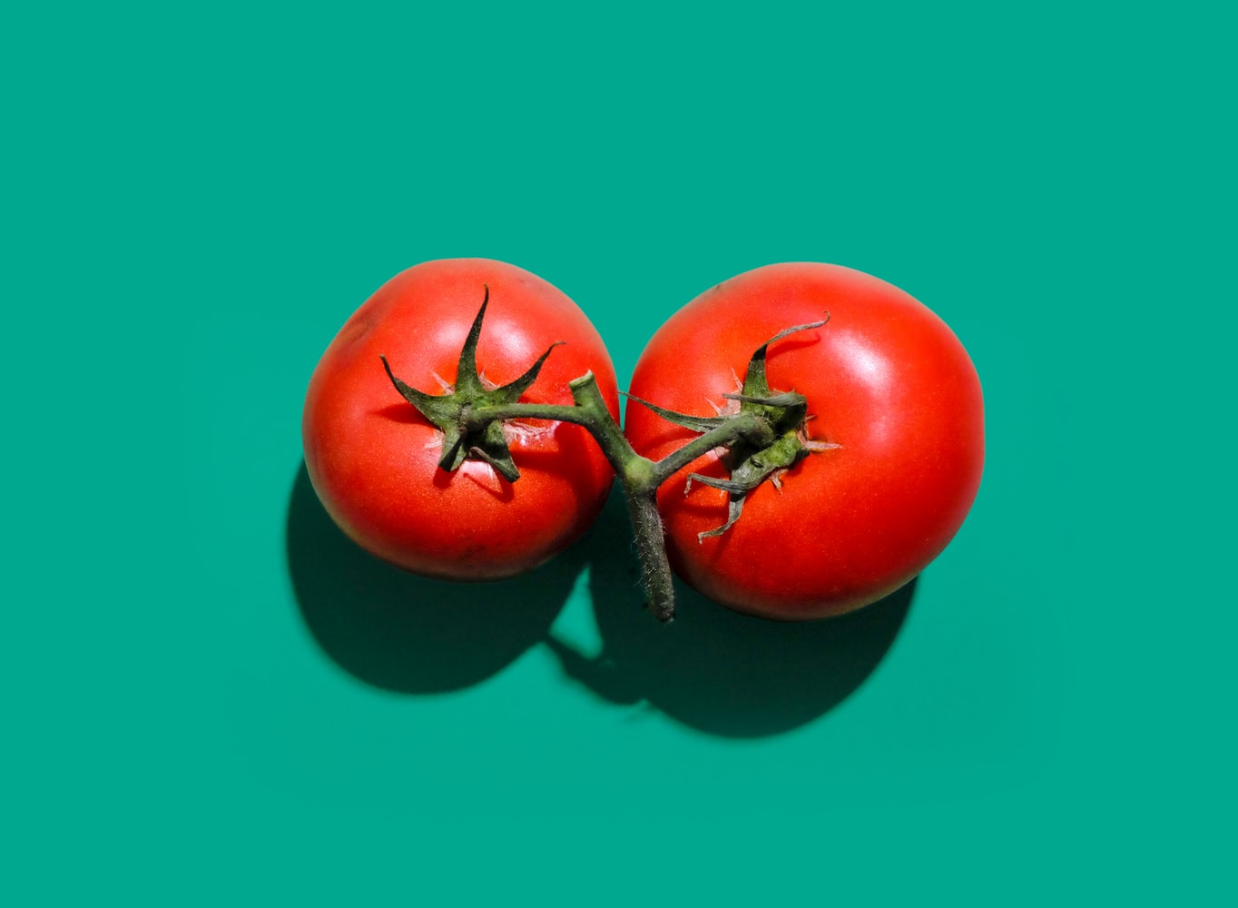 The World's First Tomato Sauce Recipe
